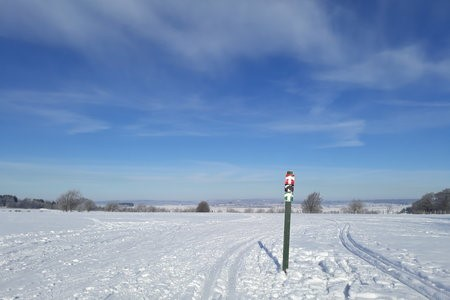 Bütgenbach-Elsenborn: Ideal location to learn cross-country skiing
